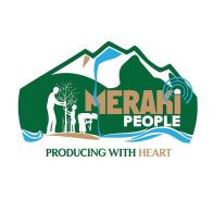 Meraki_Logo_type